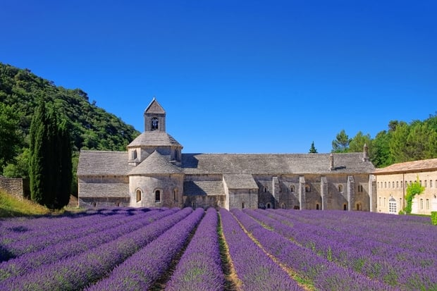 Cycling in Provence and visiting Abbaye de Senanque Luberon